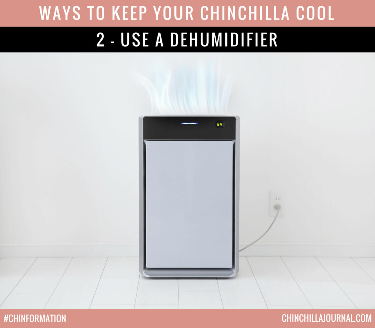 Ways To Keep Your Chinchilla Cool 2 - Use A Dehumidifier