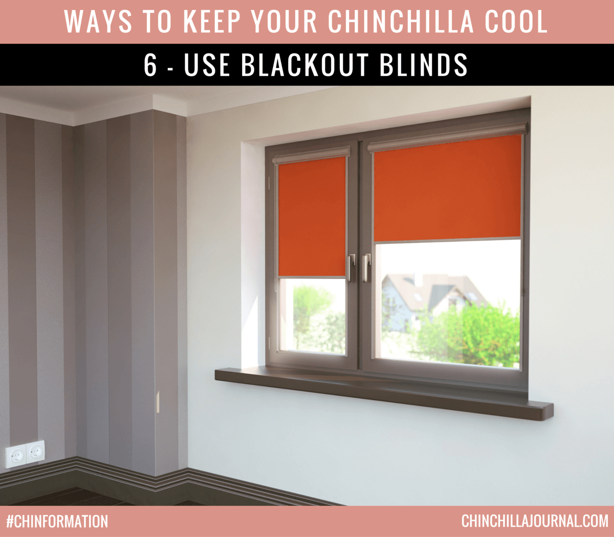 Ways To Keep Your Chinchilla Cool 6 - Use Blackout Blinds